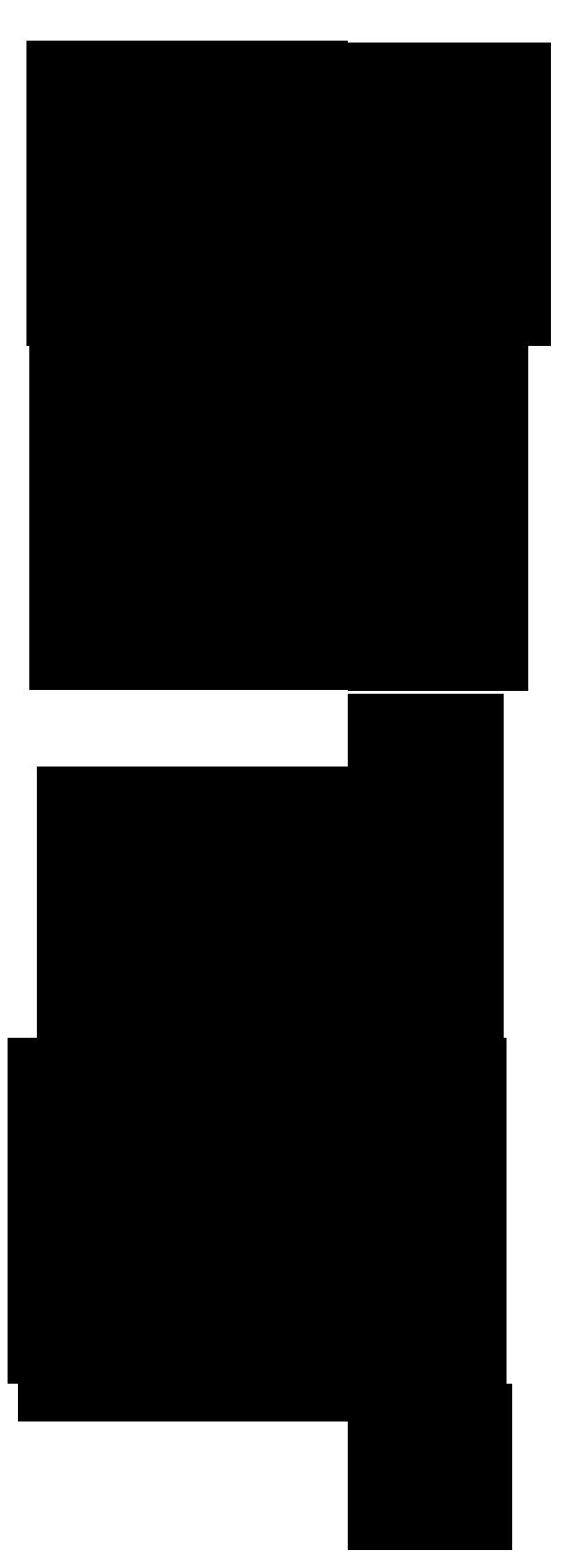 BD Sortie de la PS4